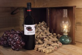 Wine bottle with grape and stoppers